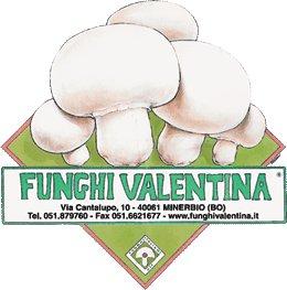 Funghi bio Valentina
